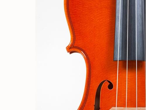museo violino stradivari cremona foto
